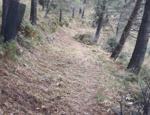 Limpieza de senderos en Casarabonela 2019. Proyecto I CxM Casarabonela y agradecimiento al Ayuntamiento de Casarabonela. Fecha: Jueves 28 Noviembre 2019